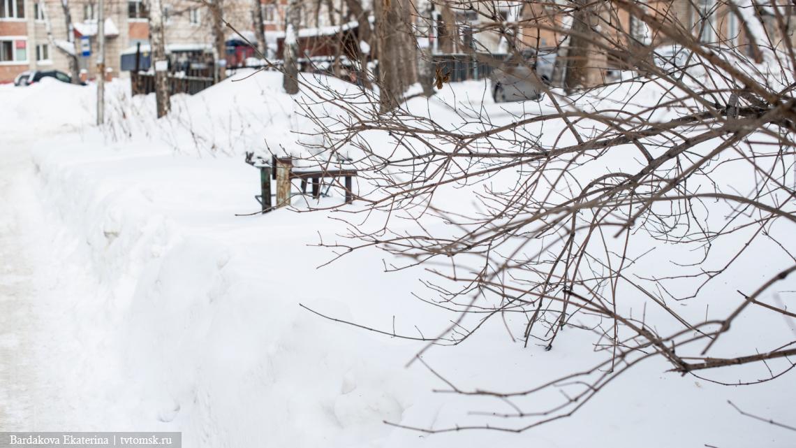 Морозно и без осадков: какую погоду обещают томичам во вторник